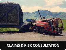 Claims & Risk Consultation
